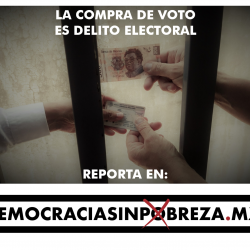http://democraciasinpobreza.mx/materiales/DemocraciaSinPobreza-05.png